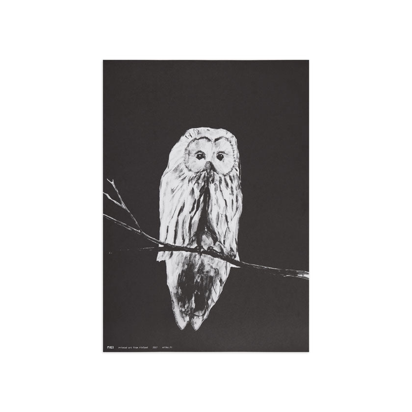 Owl poster by Miiko design Finland, Nordic nature