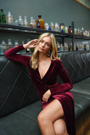 Darcy Wine Velvet Mini Dress