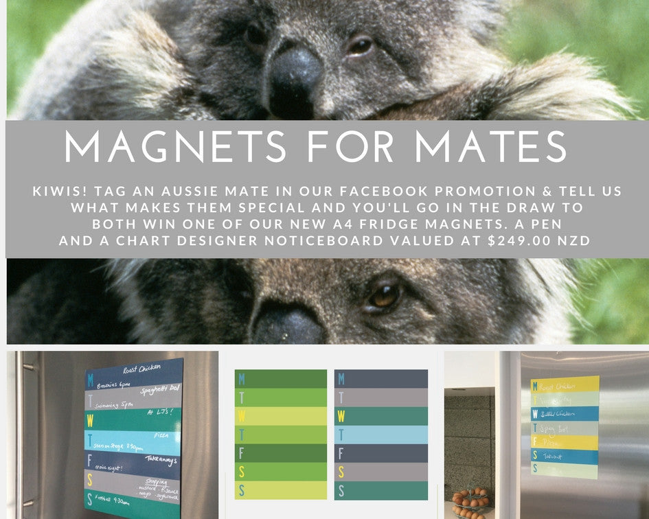 Magnets for Mates