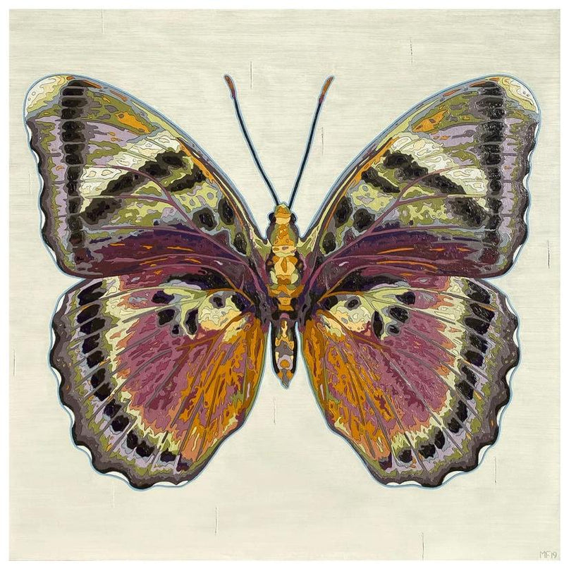 Butterfly Artwork, Pink Forester