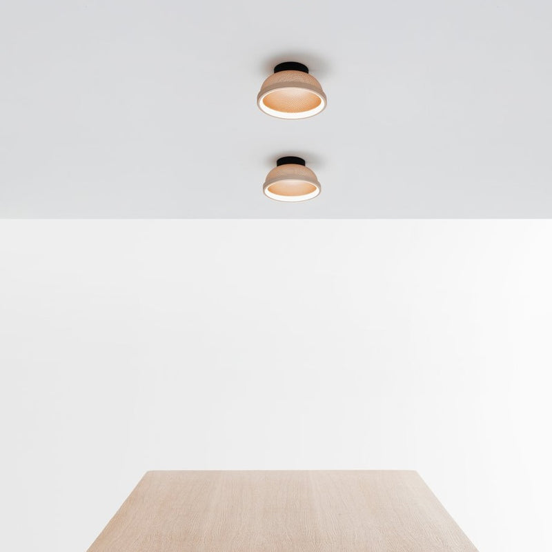 Mesh Wall / Ceiling Light