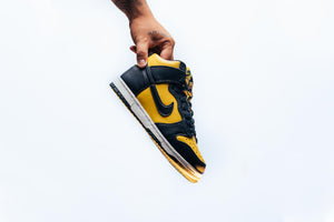 Nike Dunk Hi SP 'Michigan'