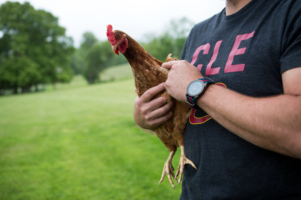 Man holding a chicken