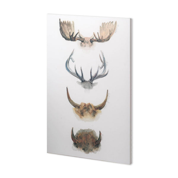 HORN & TAIL STUDY II WALL ART