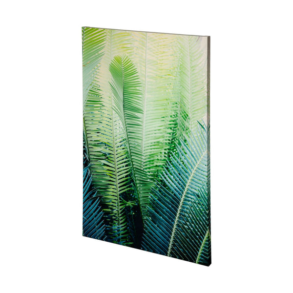 Tropical Park Canvas