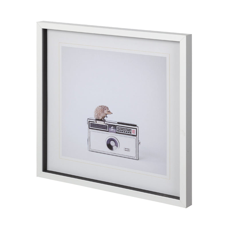 HEDGEHOG & VINTAGE CAMERA ART