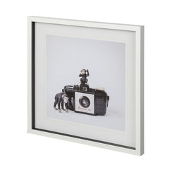 MONKEYS & VINTAGE CAMERA ART