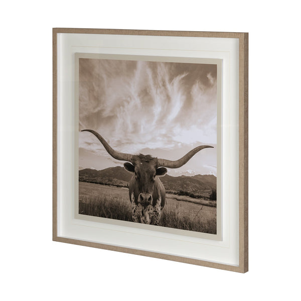LONGHORN FRAMED ART