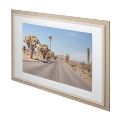 Desert Road Framed Art