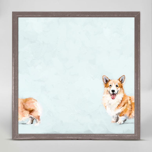 Silly Corgi Canvas