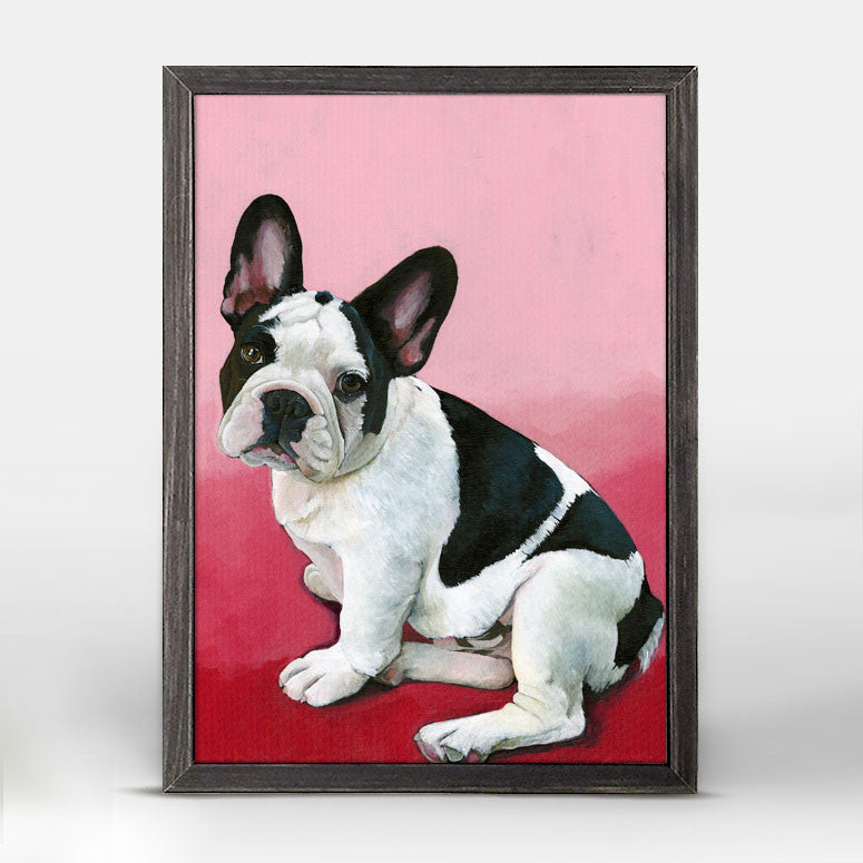 FRENCHIE DOG