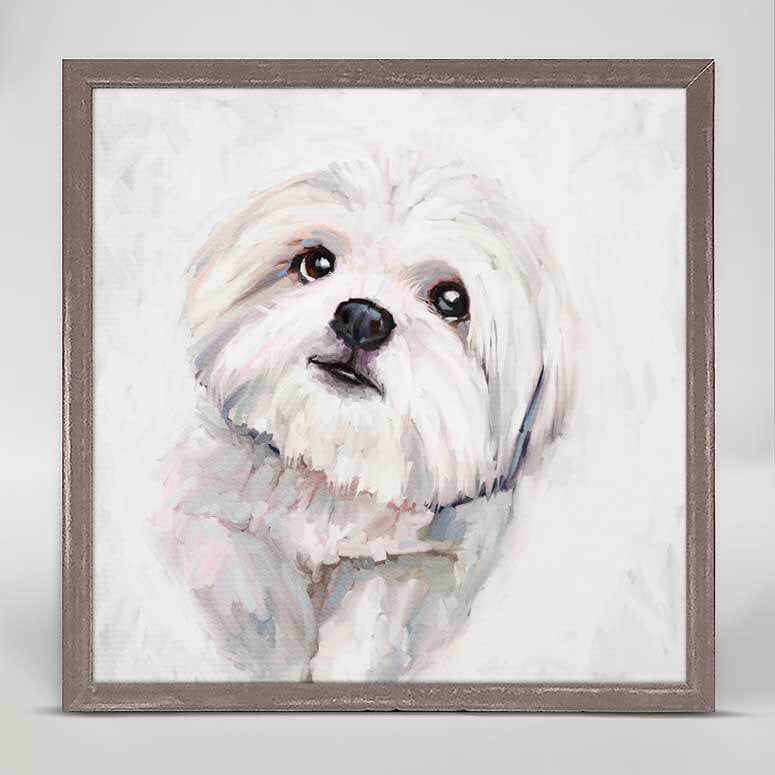 Shih Tzu Mini Canvas