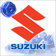 Suzuki Engine Bolt Kit