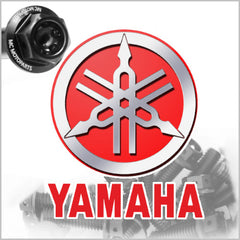Yamaha Engine Bolt Kit