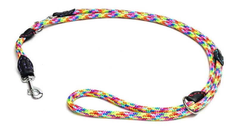 Rainbow 6 in one Rope and Leather Padded Leash