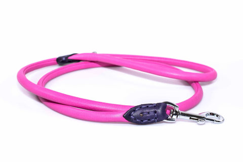 Round 4 Foot Leather Leash