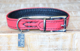FRISKY - Padded Leather Collar