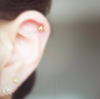 Pearl Flower Cartilage Piercing_P131