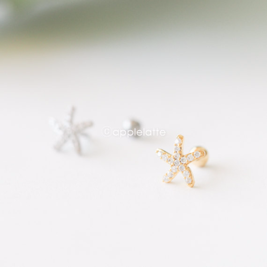 Starfish Cartilage_P138