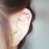 Triangle Tragus Piercing_P079