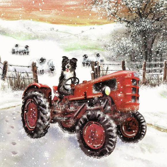 Christmas cards 'Gyrru'r Tractor' pack of 10