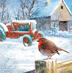 Christmas cards 'Robin a Thractor' pack of 10