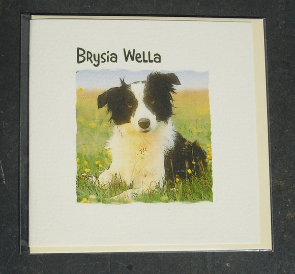 Get well soon card 'Brysia Wella' Dog