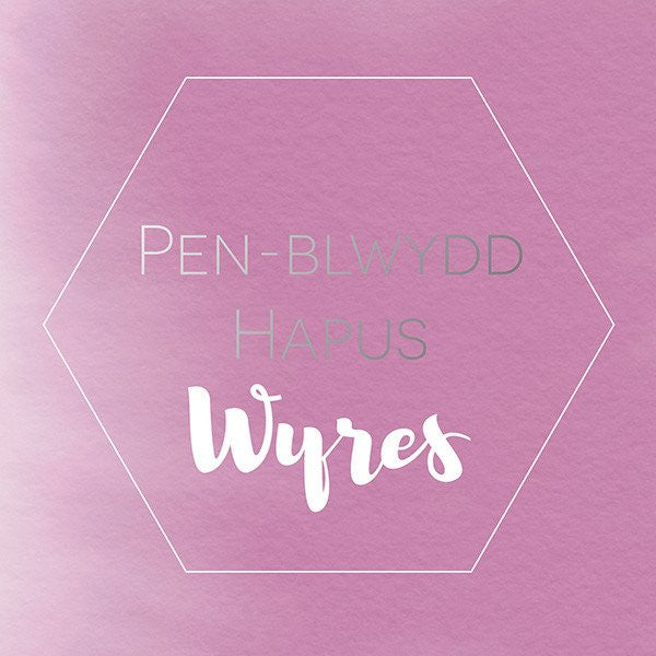 Birthday card 'Pen-blwydd hapus Wyres' Granddaughter