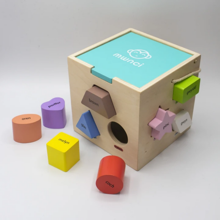 Welsh Wooden Shape Sorter