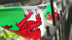 Red dragon flag - bunting