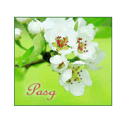Easter card 'Pasg' blossom