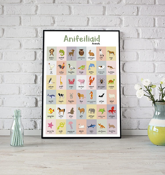 A2 Anifeiliaid Welsh Animals Poster Print