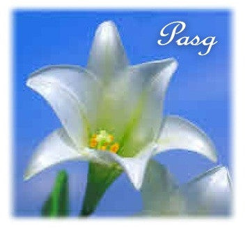 Easter card 'Pasg' lily