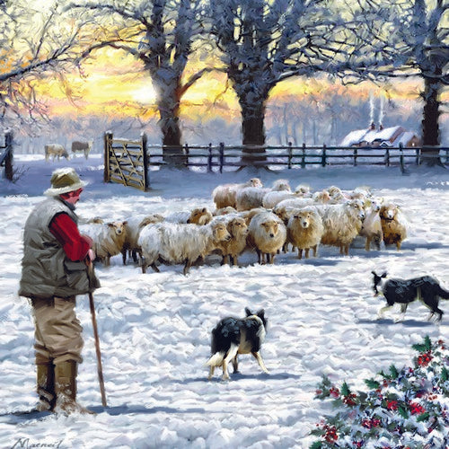 Christmas cards 'Bugail a'i Braidd' pack of 10