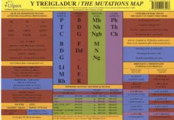 Treigladur, Y / Mutations Map, The