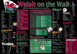 Welsh on the Wall