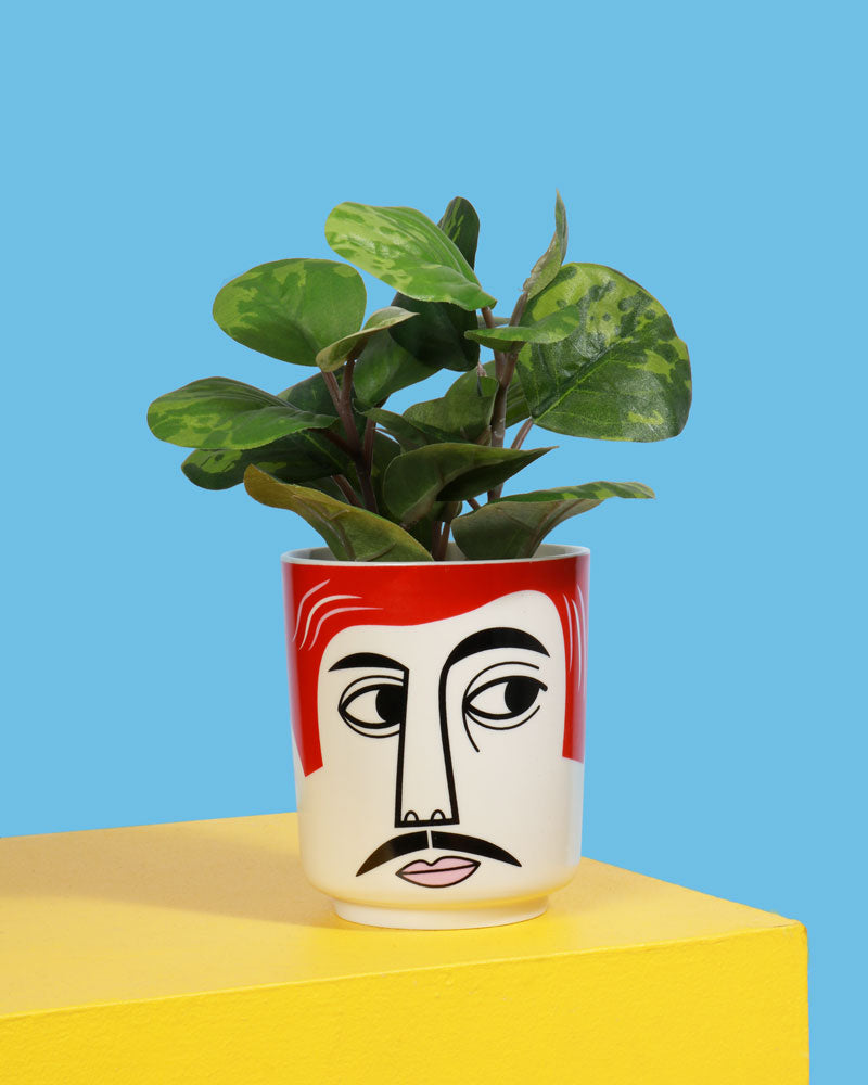 Mr Peterson Ceramic Jar