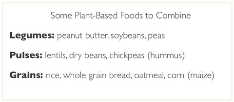 Plant based foods