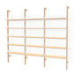 Branch-3 Shelving Unit