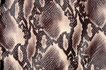 Load image into Gallery viewer, Snake Print Dress