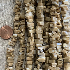 Bone & Shell Beads - Shell - Chips Golden Coral  - 16 Inch Strands