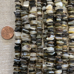 Bone & Shell Beads - Shell - Chips Black Lip - 16 Inch Strands