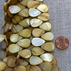 Bone & Shell Beads - Shell - Lime - Drop Side Drilled  - 16 Inch Strands