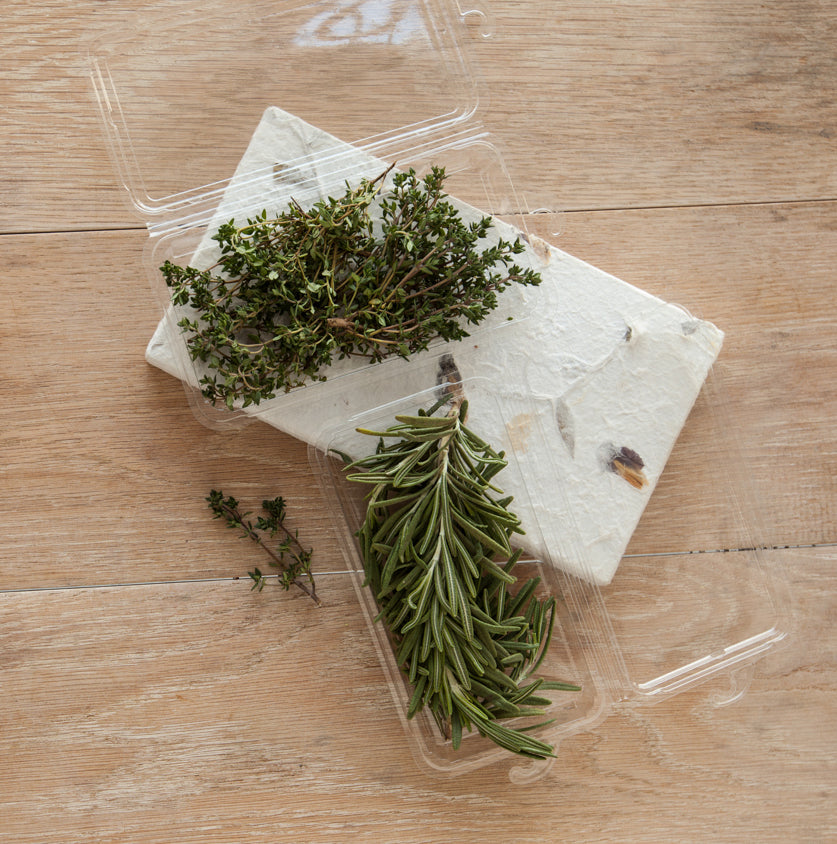 0.75 - 1 oz. Hanging Fresh Herb Package (0409) - good natured Products Inc.