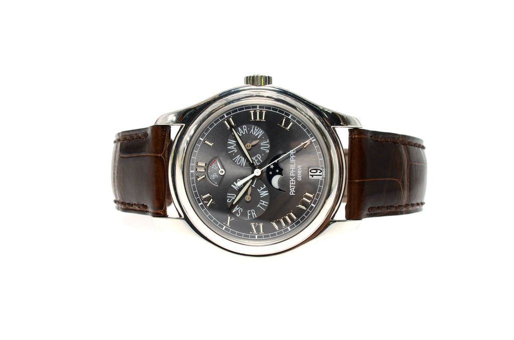 Patek Phillippe Platinum Annual Calendar Moon 5056P.