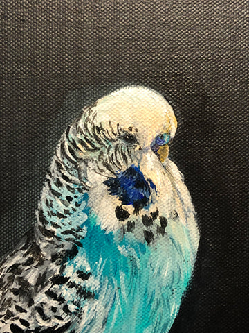 Close up of the painting - budgie