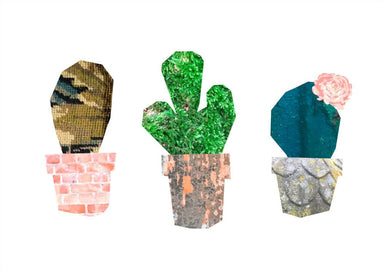 This image contains Green,Cactus,Plant,Rock,,