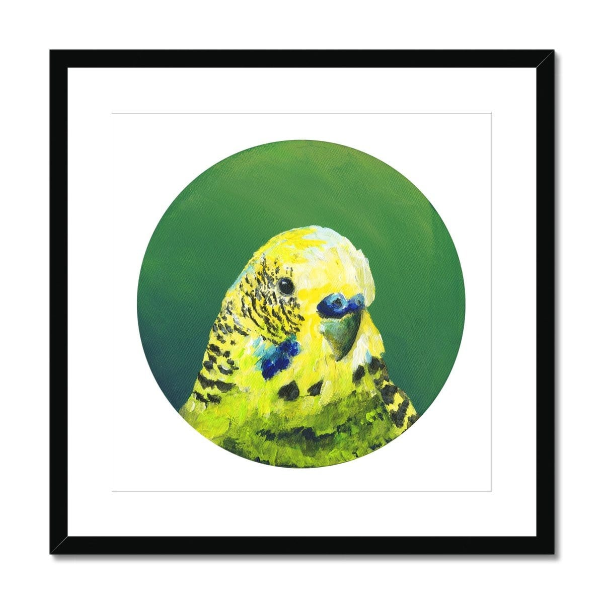Green Budgie Framed & Mounted Print