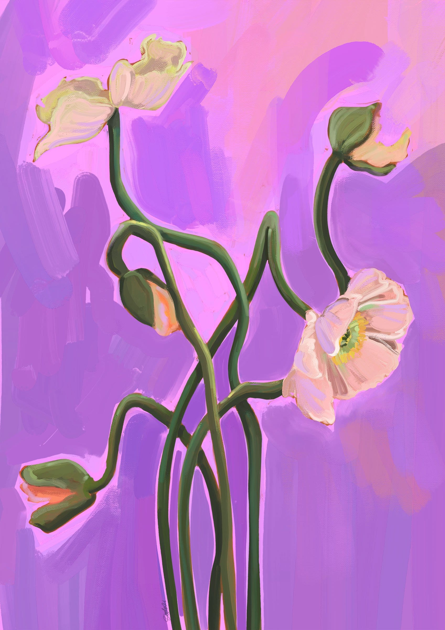 49125 Painterly Poppies Lilac