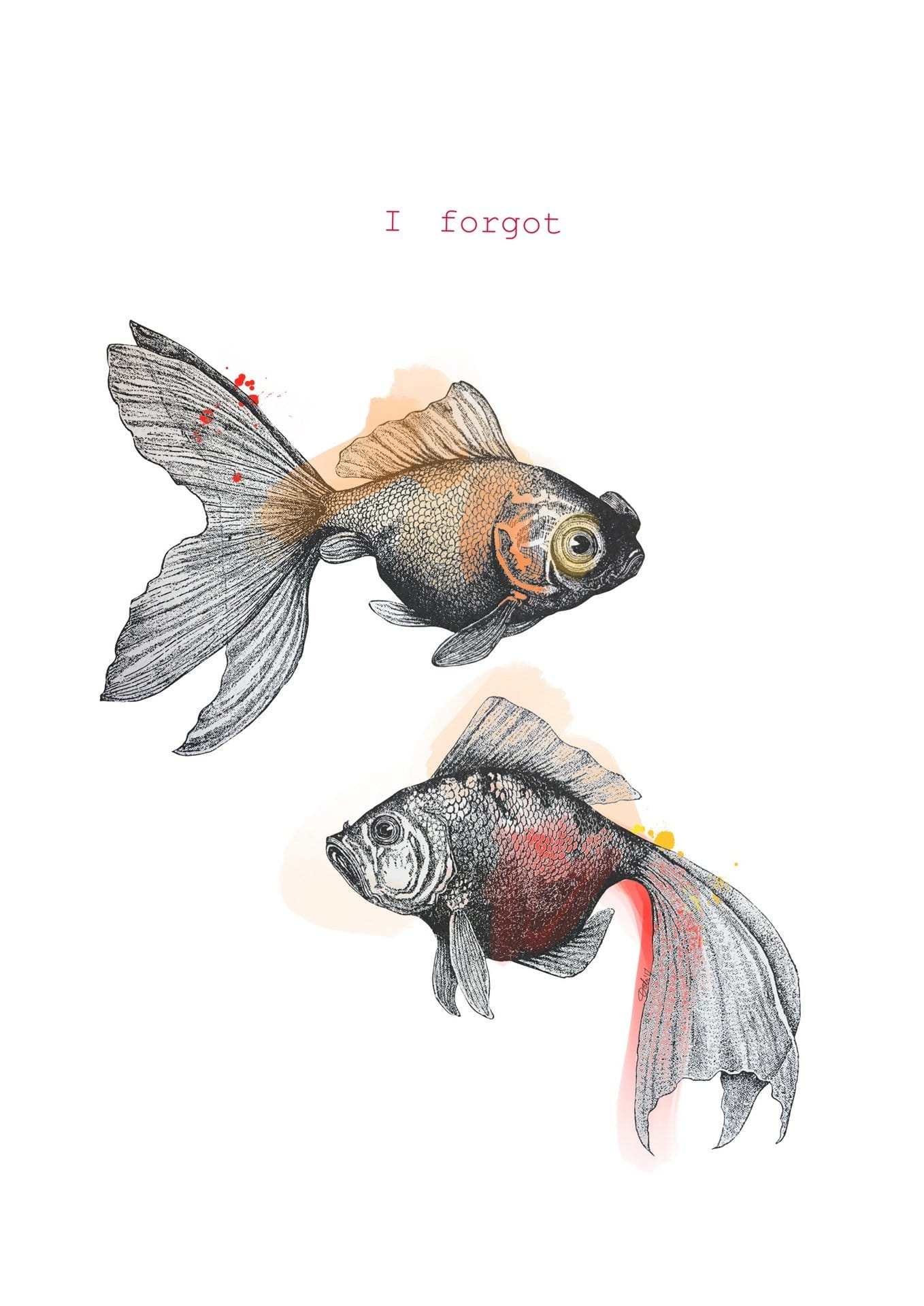 I Forgot Goldfish Greeting Card